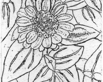 Zinnias - Original Etching & Engraving, Hand-printed