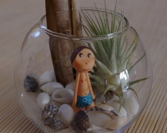 Bather or bather - Tillandsia under glass-