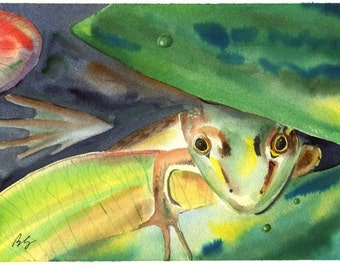 8x10 Green Frog Bull Frog and lily pads cottage lake and Pond decor watercolor art print By Barry Singer