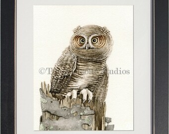 The Wandering Owl - archival watercolor print by Tracy Lizotte