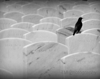 Halloween Photography, Cemetery Photography, Gothic Home Decor, Fine Art Photography, Grave Photography, Cemetery Art, Cemetary Art,