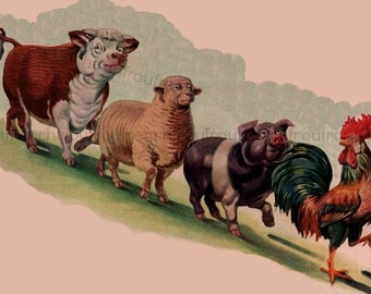 vintage farm animals illustration rooster pig cow sheep digital download
