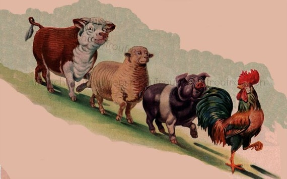 Parable The Pig And Chicken: Vintage Farm Animals Illustration Rooster Pig Cow Sheep
