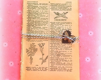 Bundle of Vintage Dictionary Pages / 5 Pages / Planner Supply
