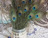 SALE - PEACOCK BUNDLE - 12 Natural Vibrant Green Small Peacock Feathers Perfect for Crafts Hairpieces Weddings Invitations Flower Bouquets
