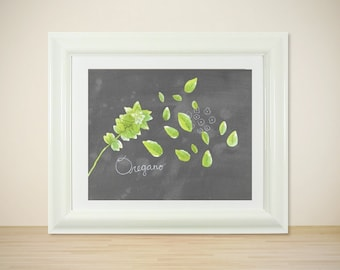 Oregano // Botanical Illustration Print, Kitchen Art, Country Kitchen, Drawing, Herbs, Art Poster, Garden, Chalkboard, Typographic Print