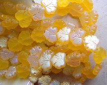 20 Maple Leaves, Soft Yellow Matte AB, Aurora Borealis, Metallic, Czech Pressed Glass,10mm x 13mm, Full Strand