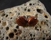 Handmade Natural Bubinga Wood Stud / Post Earrings - Dark color - Great Gift Idea