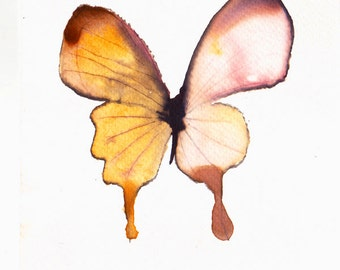yellow and white butterfly. original watercolour painting