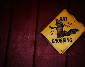 Bat Crossing Sign Photo, Halloween Photography, Yellow Black Blood Red Fall Autumn Harvest Vampire Decor, Dark Gothic Home Decor Wall Art