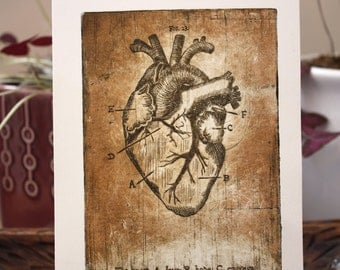 Anatomy of the Heart Copper Plate Etching Print Anatomical Illustration