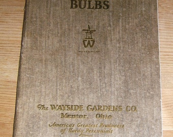Wayside Gardens 1929 Colorful Imported and Native Bulb Catalog, Mentor, Ohio