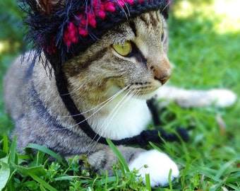 Cat Hat, Hat for Cats  - The Pink Zebra Wackadoodle Hat for Cats and Small Dogs