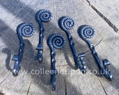 Ammonite Coat Hook Decorative and Functional Hand Forged Door Hook