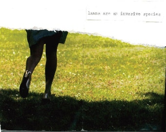 lawns are an invasive species    mini-zine of collage and poetry