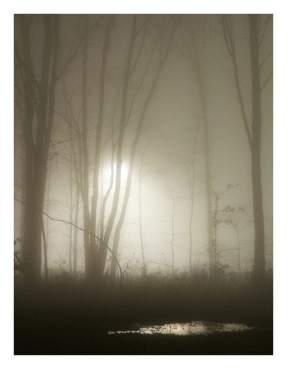 Night Fog - Photo Print - Nature Photography (NP03) - FirstShotPhoto