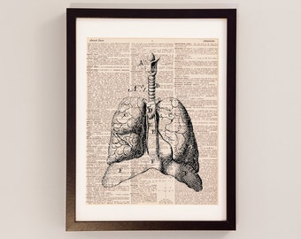 Vintage Lungs Print - Anatomy Art - Print on Vintage Dictionary Paper - Doctor Gift - Medical School