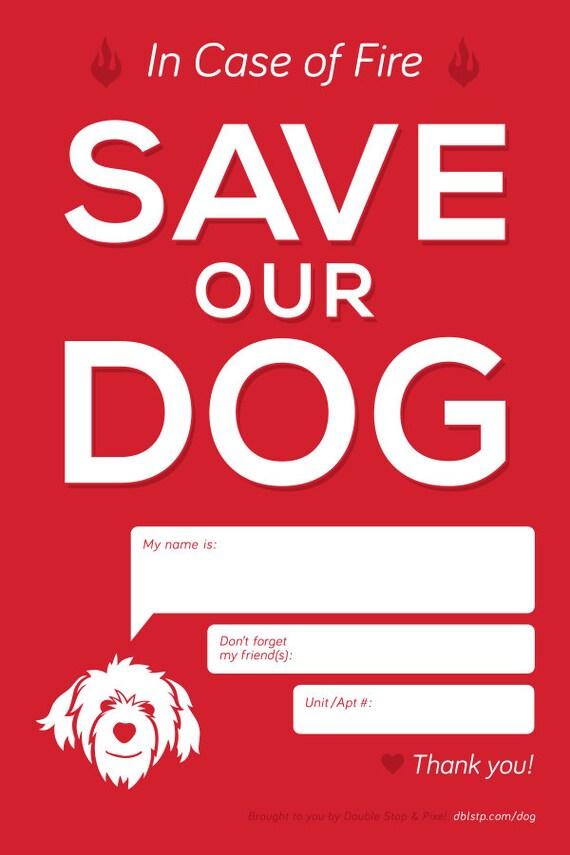 In Case Of Emergency Pet Window Decal
