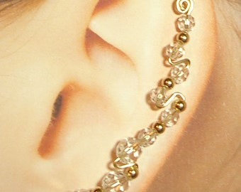 "Climbing Earrings ""Full-Ear Style"" Custom made"
