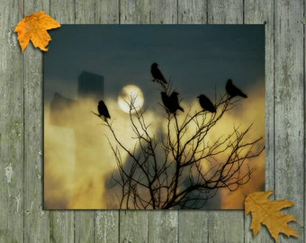 Otherworldly, Gothic  Image, Crows In Trees, Surreal Ravens, All Hallow's Eve, Full Moon - Halloween Is In The Air