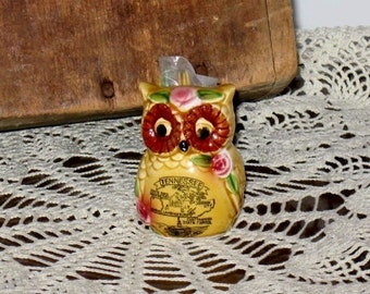 Vintage Owl Toothpick Holder -Souvenir from Tennessee