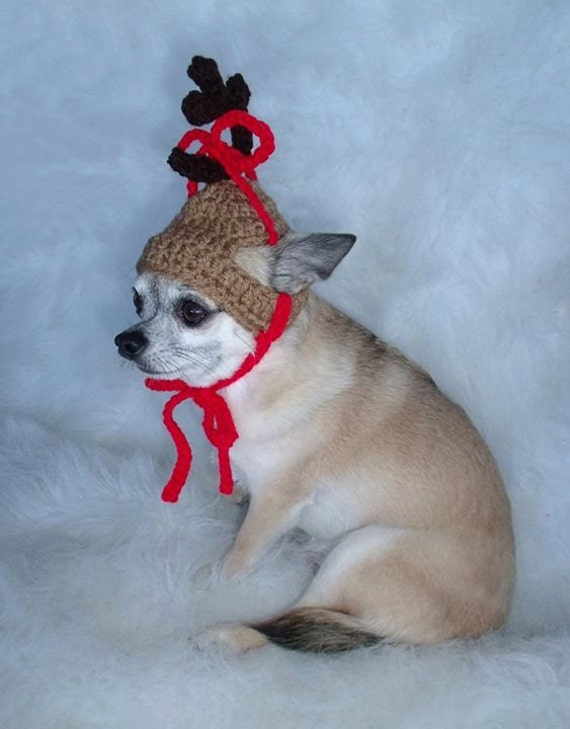 The GRINCHs DOG MAX - Christmas pet hat - Reindeer Humorous - 2 to 20 lb pets- Need Measurements