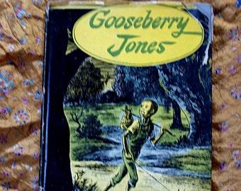 Gooseberry Jones Will Gerber Dudley Morris illustration boy and his dog travel adventure children book