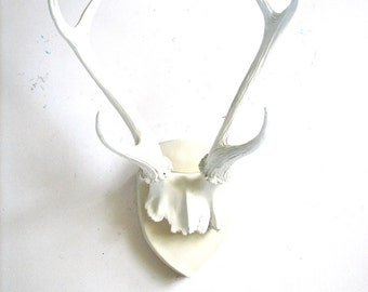 ALL WHITE Faux Antler Plaque Wall Hanging White antlers Nursery wall decor  farm house wall decor Rustic Modern Wall Mount Wall Decor