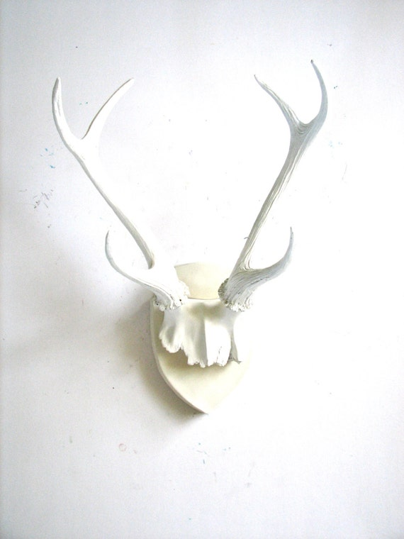 Faux antlers plaque wall hanging rustic modern wall mount wall for Antler wall decor