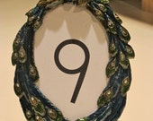 Vintage peacock frame table numbers