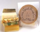 Natural Citrus Soap Sampler - All natural soap, Vegan soap, Handmade soap, Soap gift set, Guest soap