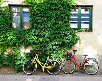 Copenhagen Denmark Photography - Bicycle Print - Bike Wall Art Green Ivy Photo Yellow Red European Travel Decor Urban Landscape