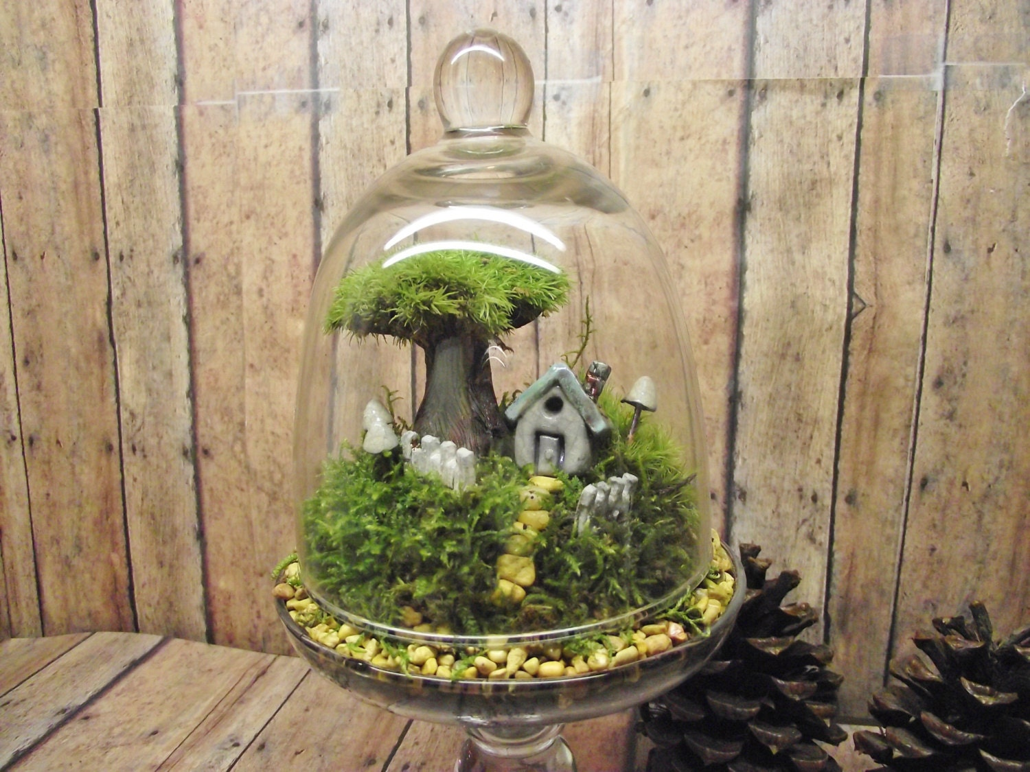 home sweet home decor live moss terrarium miniature by gypsyraku. Black Bedroom Furniture Sets. Home Design Ideas