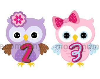 12 Monthly Stickers Month to Month Baby Shower gift baby stickers Milestone stickers set Baby Girl Owl decals age stickers Onepiece Bodysuit