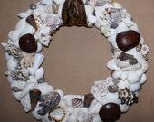 Shell wreath - 13 inch wreath - seashell wreath - beach wreath- coastal wreath - coastal decor