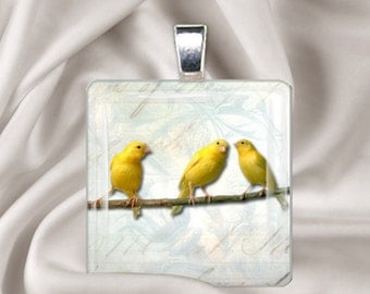 3 Little Canaries - Square Glass Tile Pendant Necklace