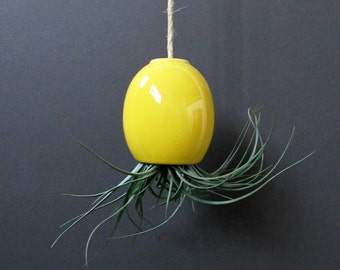 SALE - small yellow hanging airplant pod planter (tm)
