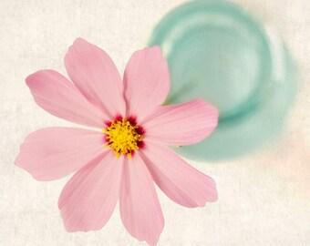 Cosmos Flower Photography Print, Flower Art Print, Pink, Aqua, Flower Photo, Floral Photography Print, Wall Art, Wall Decor