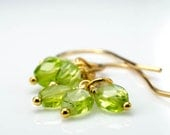 Peridot Faceted 14k Gold Fill Emily Earrings August Birthstone