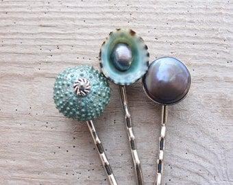 Teal Sea Urchin Bobby Hair Pins - Sea urchin, Pearls and Shell