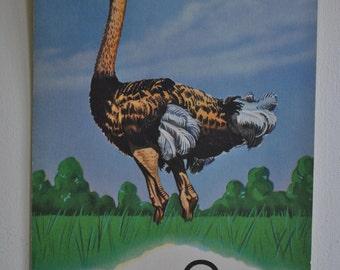 vintage alphabet card - letter o - ostrich