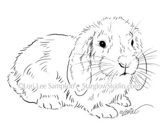 Digital Download Bunny Rabbit Sketch Digital Stamp: Rabbit Clipart, Floppy Ears, Easter Bunny Clipart, Bunny Drawing, jpg & png