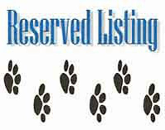 RESERVED LISTING FOR Nadyne