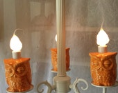 Chandelier Owl Lighting Orange Home Decor  In Stock in White