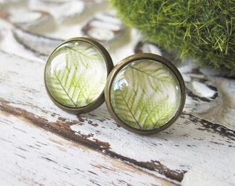 Fern Antique Brass Post Earrings