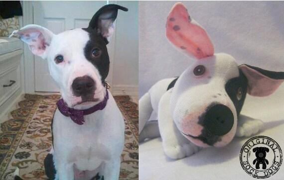 JUNE DELIVERY-Custom Original Sock Dog or Any Pet