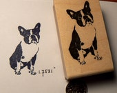 Small Boston Terrier rubber stamp P44