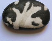 Painted Rock--Black and White Cat--Hand-Painted Stone Decor