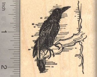 Raven Rubber Stamp, Blackbird, Crow, Bird   J22608 - Wood Mounted