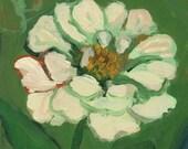 Reserved for Angela -- White Zinnia & Zinnias September - wantknot shop